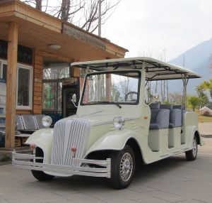 8 Seaters Shuttle Bus Classic Sightseeing Cart pictures & photos