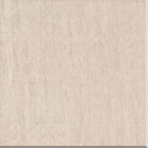 Matte Rustic Porcelain Tile with 600*600 Mm (T613) pictures & photos