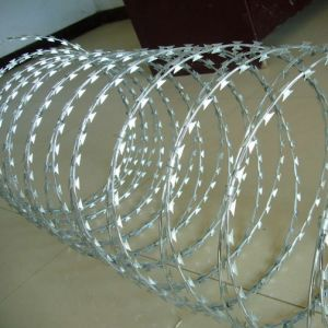 Double Coil Clipped Concertina Barbed Wire pictures & photos