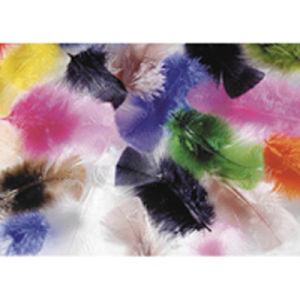 High Quality and Cheap Price Guinea Feather, 3G pictures & photos