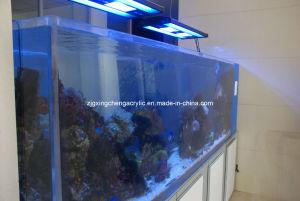 Large Home Aquariums for Sale/Wholesale Aquarium Tanks pictures & photos