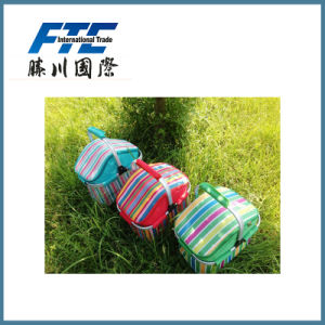 Picnic Cooler Bag /Cooler Box/Ice Bag pictures & photos
