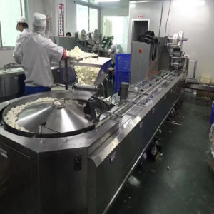 Automatic Food Packaging Machine for Candy/Chocolate pictures & photos