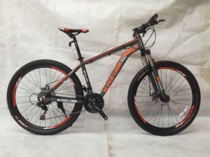 Nice Design Mountain Bicycles pictures & photos