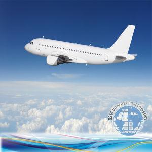 Shenzhen Shipping Forwarder to Kazakstan, Kirgizstan, Korea, Maldives (Aisa) pictures & photos