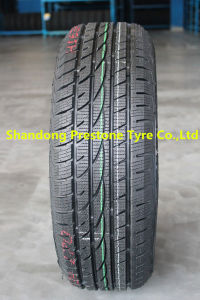 205 55 16 235/55r18 Double King Snow Tire Tyre pictures & photos