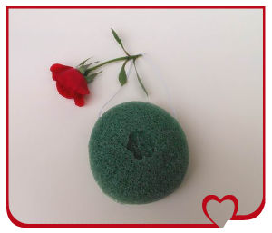 2014 Newest 100% Natural Vegetable Plant Green Tea Konjac Sponge for Skin Care and Face Cleansing pictures & photos