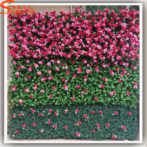 New Design Home Decoration Artificial Grass Wall pictures & photos