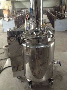Electrical, Hydraulic, Temperature-Controlled and Horizontal Gelatin Feeding Barrel