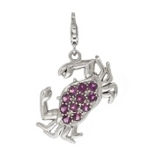 Dangle Charms for Bracelet (CP0028)