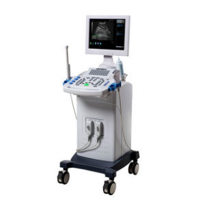 Med-B-Wed-660 Full Digital 3D B/W Ultrasound Diagnostic System pictures & photos