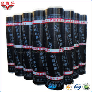Sbs Modified Bitumen Waterproof Membrane with PE Film, Bituminous Waterproof Membrane with PE Film pictures & photos