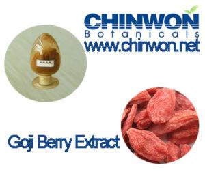 Immunity Enhancer Goji Berry Extract
