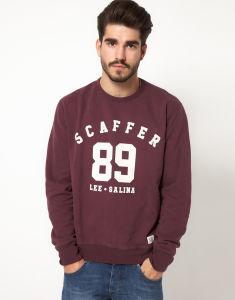 Cotton Hoodies / Men Sweatshirt (MS000040) pictures & photos