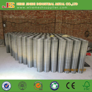 Galvanized Welded Mesh Used for Construction Made in China pictures & photos