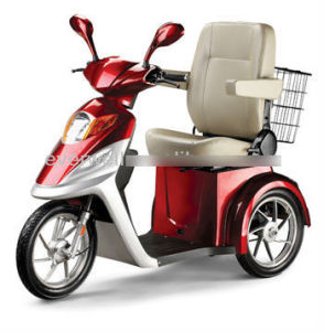 Handicapped Electric Tricycle Evmj-04