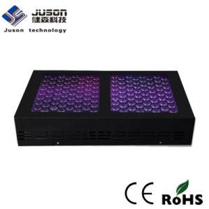 High PAR Full Spetrum LED Grow Light 600W pictures & photos