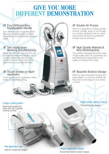 4 Handles Cryolipolysis Body Slimming Salon Equipment pictures & photos