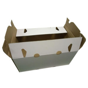 Fruits Box Corrugated pictures & photos