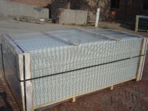 Welded Wire Mesh Panel / Metal Wire Mesh / Welded Wire Netting pictures & photos