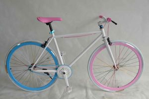 Fixed Bike (WT-FT1402) pictures & photos