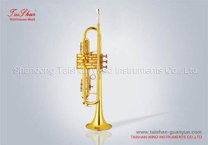 Trumpet (TSTR-802)