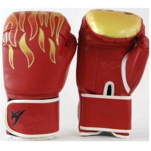 Breathable Thai Training Glove Boxing Sanda Fists Martial Arts Glove PU pictures & photos