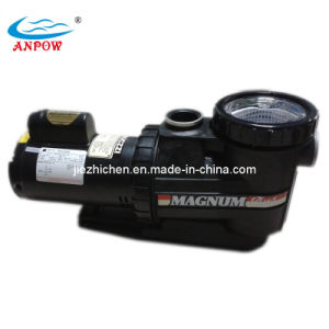 Swimming Pool Water Filter Pump pictures & photos