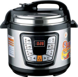Electric Pressure Cooker (CR-16)