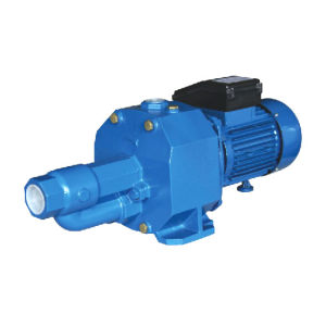 High Suction Self-Priming Pump with 2 Impellers for Deep Wells