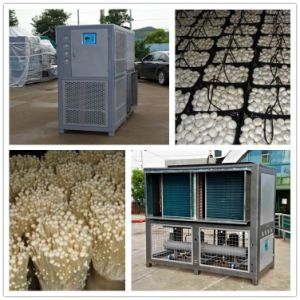 Mushroom Climate Controller for Cultivation pictures & photos