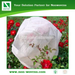 PP Nonwoven Tree Cover pictures & photos