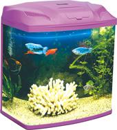 Eye-Catching Mini Aquarium Tank (MN480)