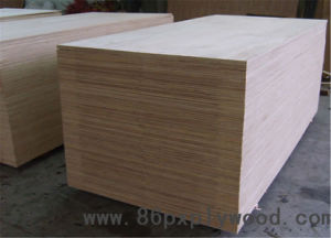 Hot-Press for Plywood - Eucalyptus Core Plywood