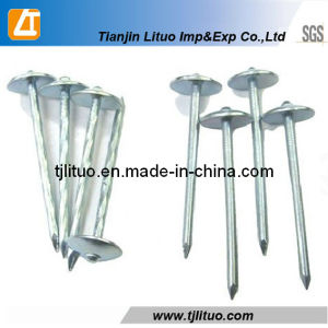 Factory Hot Sale! Eg. Smooth/Twisted Shank Umbrella Head Roofing Nails pictures & photos