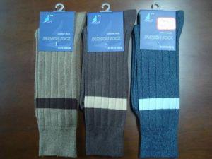 Men′s Socks (HGS5102)