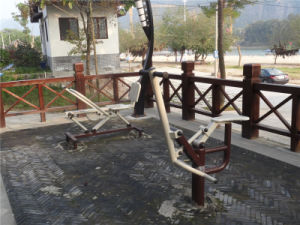Adult High Quality Outdoor Fitness Equipment with GS Certificate pictures & photos
