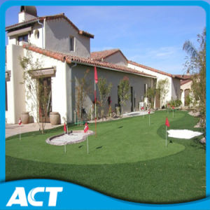 Artificial Grass/ Turf for Golf or Hockey G13 pictures & photos