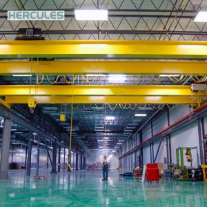 Double Girder Magnet Crane with Auxiliary Hook pictures & photos