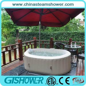 Prefabricated Garden SPA Pool (pH050012 Coffee) pictures & photos