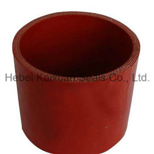 Professional Manufacturer Silicone Rubber Hose pictures & photos