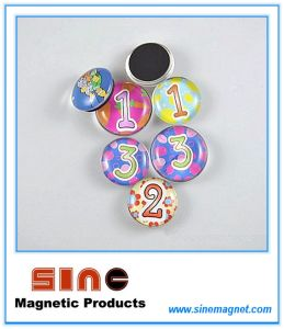 Innovative Different Styles of 3D Glass Fridge Magnet pictures & photos