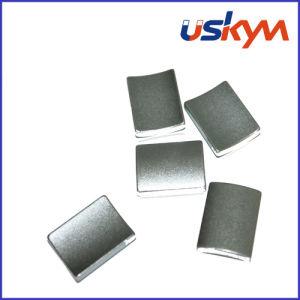 Segment Neodymium Magnet Motor Magnet pictures & photos