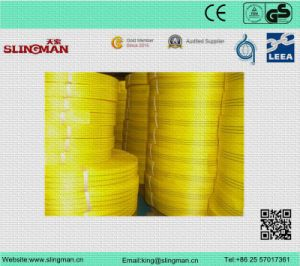 Webbing Material for Sling pictures & photos