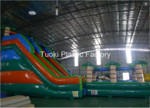 15m Rainbow Palm Trees Inflatable Water Slides Pools pictures & photos