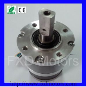High Torque Brushless Motors for Textile Machine (FXD57BL-2450-003) pictures & photos