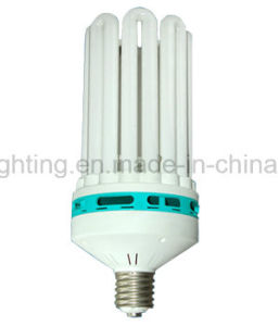 3u T4 13W CFL Bulb with CE (BNFT4-3U-A) pictures & photos