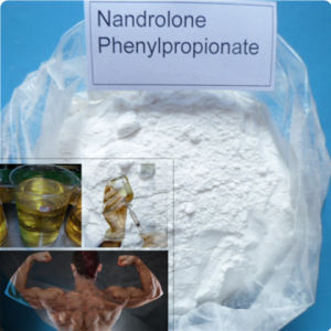 Npp Durabolin Gain Muscle Injection Steroid Nandrolone Phenylpropionate for Bodybuilding pictures & photos