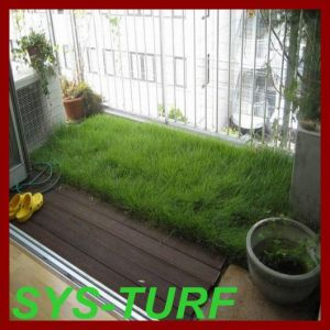 15750 Density Artificial Grass with Dark Green Color pictures & photos