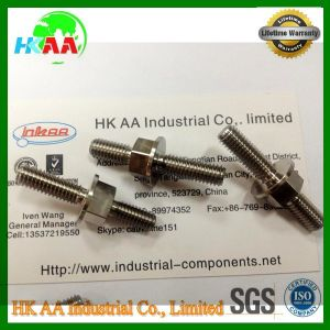 Stainless Steel Motorcycles Worm Gear Shaft, Worm Shaft pictures & photos